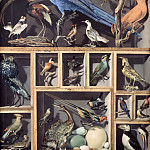 Vicomte de Barde Leroy -- Reunion of foreign birds, Part 2 Louvre