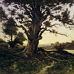Henri-Joseph Harpignies, French, 1819-1916 -- Oak, Philadelphia Museum of Art