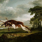 George Stubbs, English, 1724-1806 -- Hound Coursing a Stag, Philadelphia Museum of Art