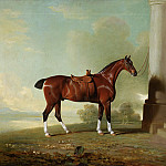 Philadelphia Museum of Art - Benjamin Marshall, English, 1768-1835 -- Favorite Chestnut Hunter of Lady Frances Stephens