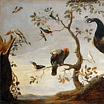 Frans Snyders -- Assembly of Birds perched in Branches, Part 3 Louvre
