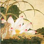 Chinese artists of the Middle Ages - Xie Sun [谢荪 - 荷花图]