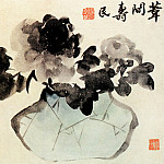 Chinese artists of the Middle Ages - Bian Shou Min [边寿民 - 牡丹图]