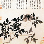 Chinese artists of the Middle Ages - Shen Zhou [沈周 - 牡丹图]