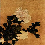 Chinese artists of the Middle Ages - Fan Qi [樊圻 - 牡丹图]