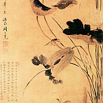 Chinese artists of the Middle Ages - Zhou Zhi Mian [周之冕 - 莲渚文禽图]