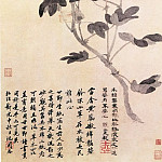 Chinese artists of the Middle Ages - Sun Ai [孙艾 - 木棉图]