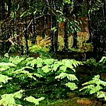 Ferns , Roerich N.K. (Part 1)