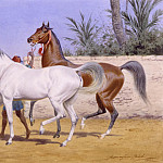 часть 3 -- European art Европейская живопись - John Alexander Harington Bird Bringing out the Arabians 74179 3606
