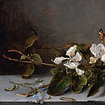 Balthasar van der Ast – Still life with apple twig, Part 1