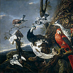 Part 4 Prado Museum - Fyt, Jan -- Concierto de aves