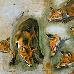 Pieter Boel -- Views of a Fox, Part 1 Louvre