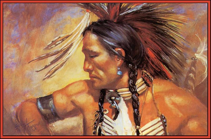 Кароль Теру Великий знахарь. Коренные американцы