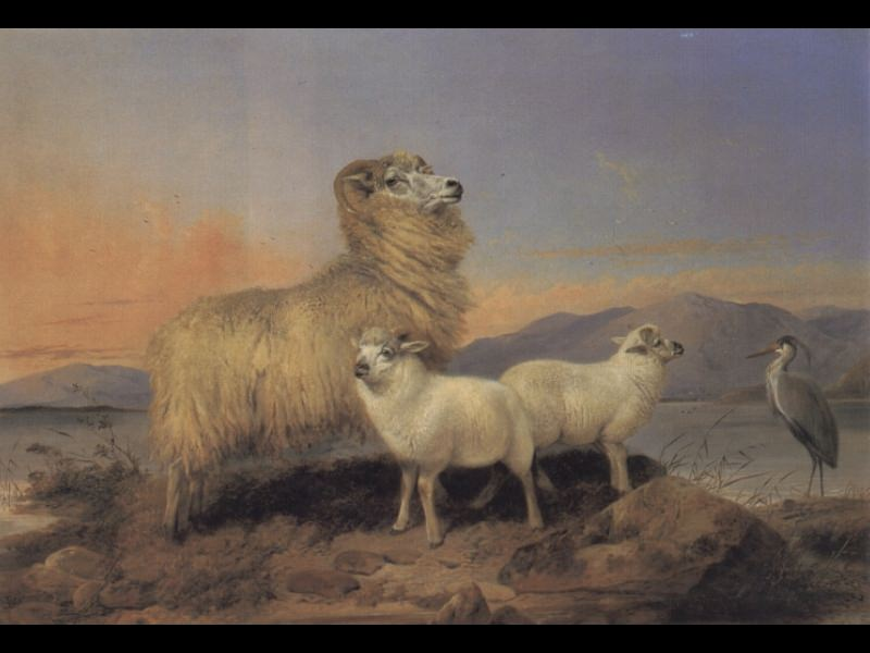 A Ewe with Lambs and A Heron Beside A Loch. Richard Ansdell