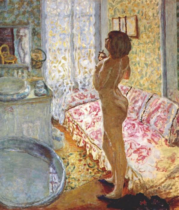 nude against the light 1908. Pierre Bonnard