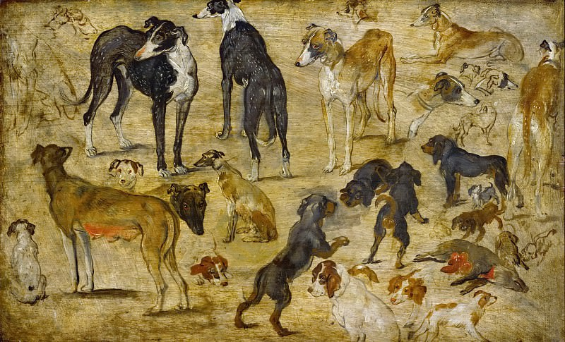 Studies of Dogs. Jan Brueghel The Elder