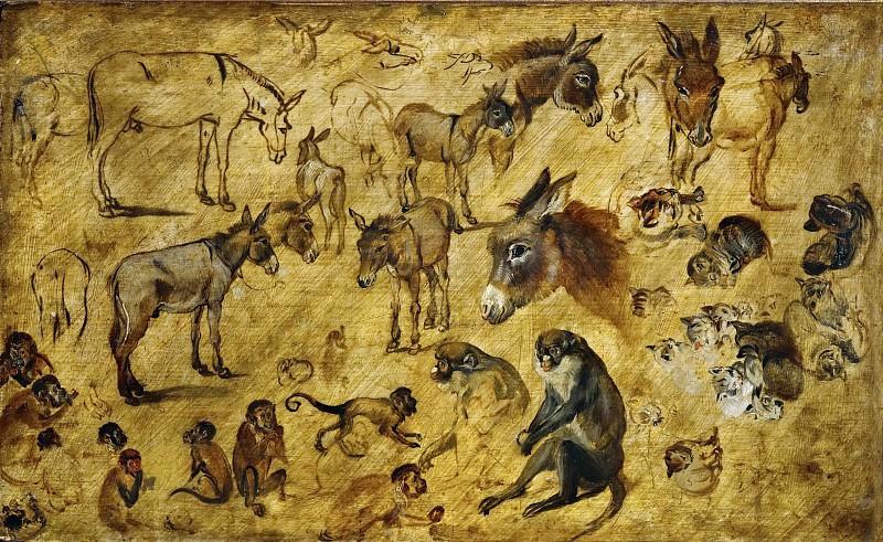 Studies of Donkeys, Cats, and Monkeys. Jan Brueghel The Elder