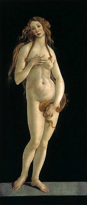Venus (workshop). Alessandro Botticelli