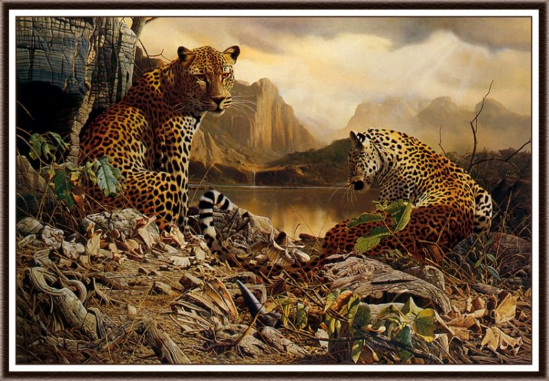 Year Of The Leopard. Craig John Bone