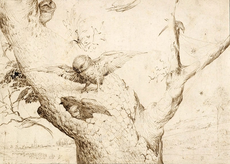 The Owl s Nest. Hieronymus Bosch