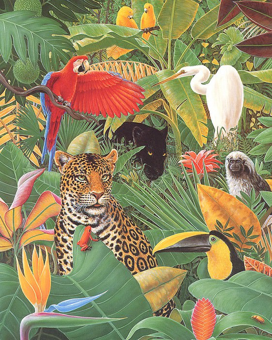 Jungle Story. Charles Bragg