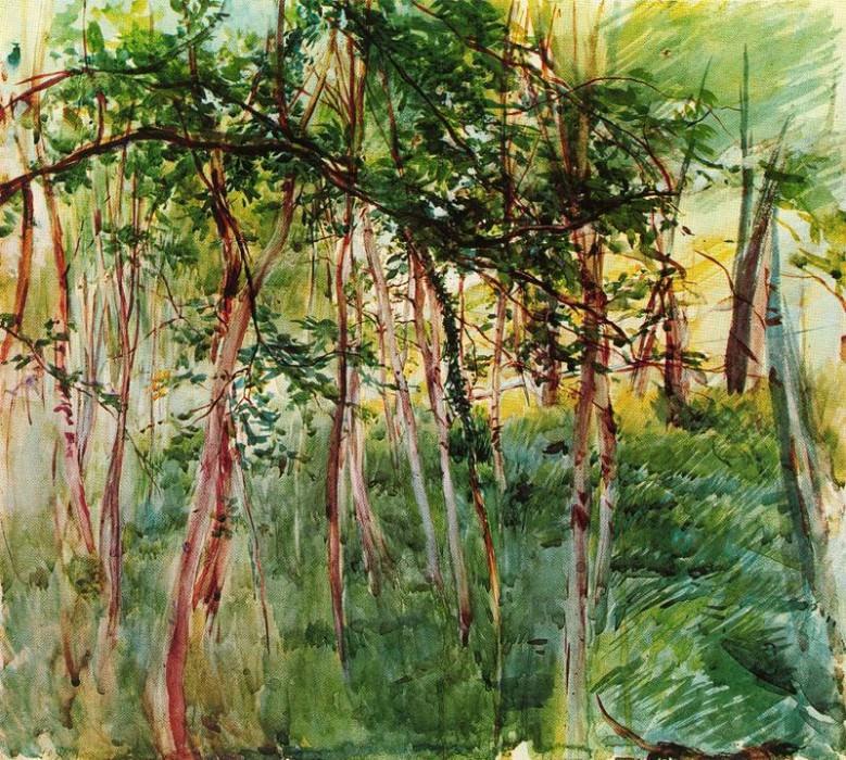 Alberi al Bois de Boulogne. Giovanni Boldini