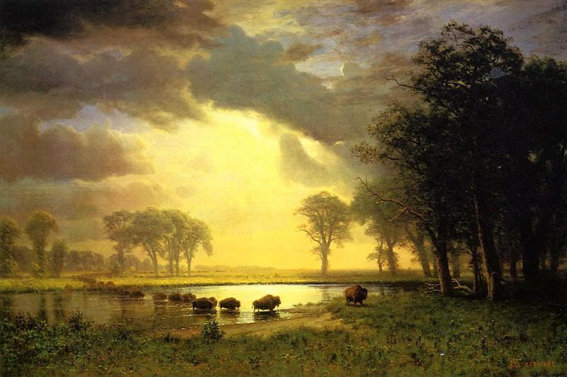 The Buffalo Trail. Albert Bierstadt