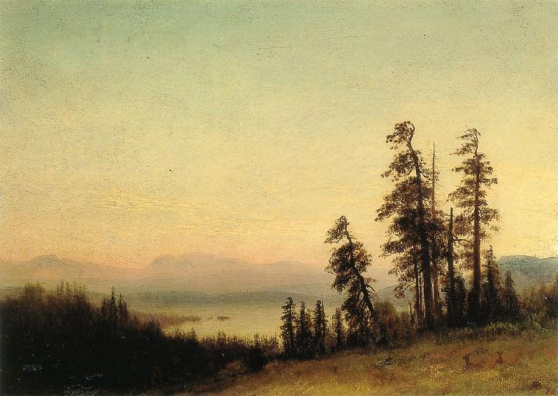 Landscape With Deer. Albert Bierstadt