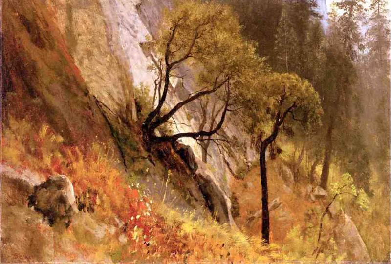 Этюд ландшафта в Йосемитской долине, Калифорния. Альберт Бирштадт