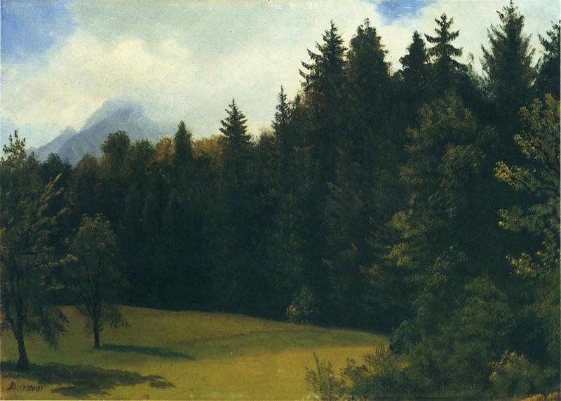 Mountain Resort. Albert Bierstadt