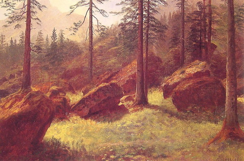 Wooded Landscape. Albert Bierstadt