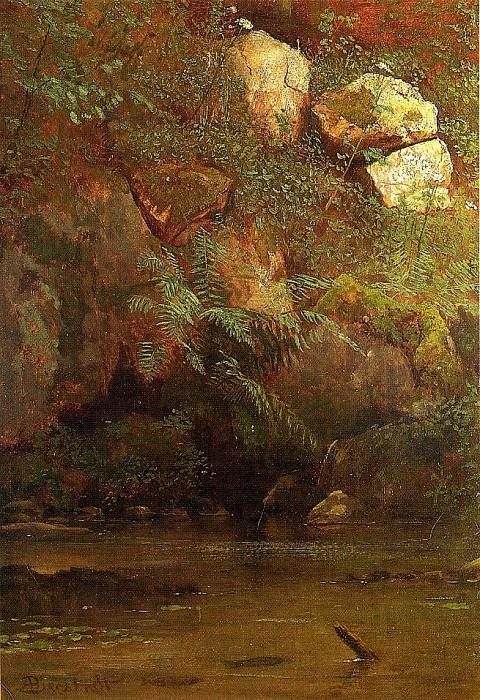 Ferns and Rocks on an Embankment. Albert Bierstadt