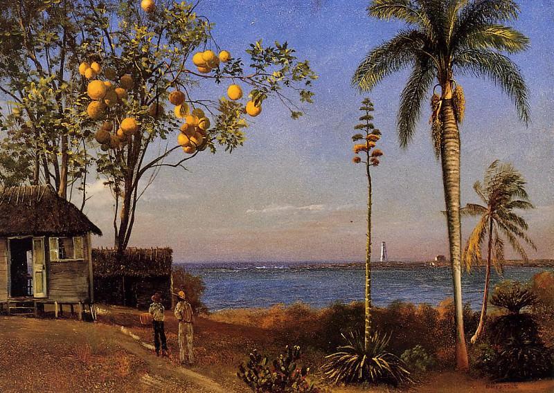 A View in the Bahamas. Albert Bierstadt