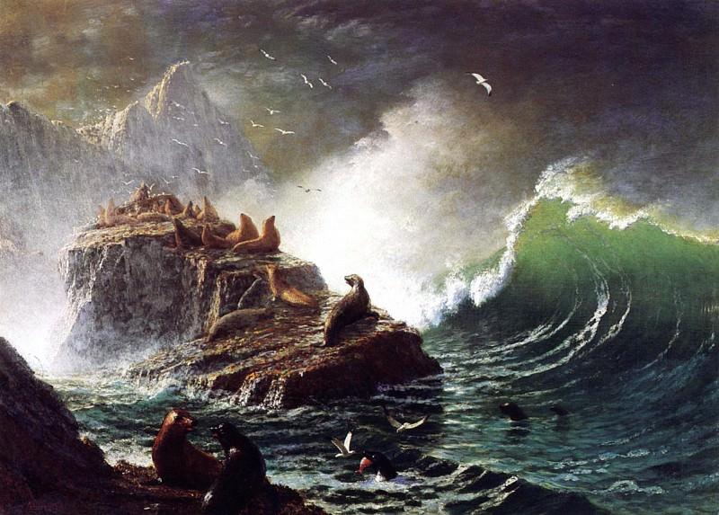 Тюлени на скалах Фараллоновых островов. Альберт Бирштадт