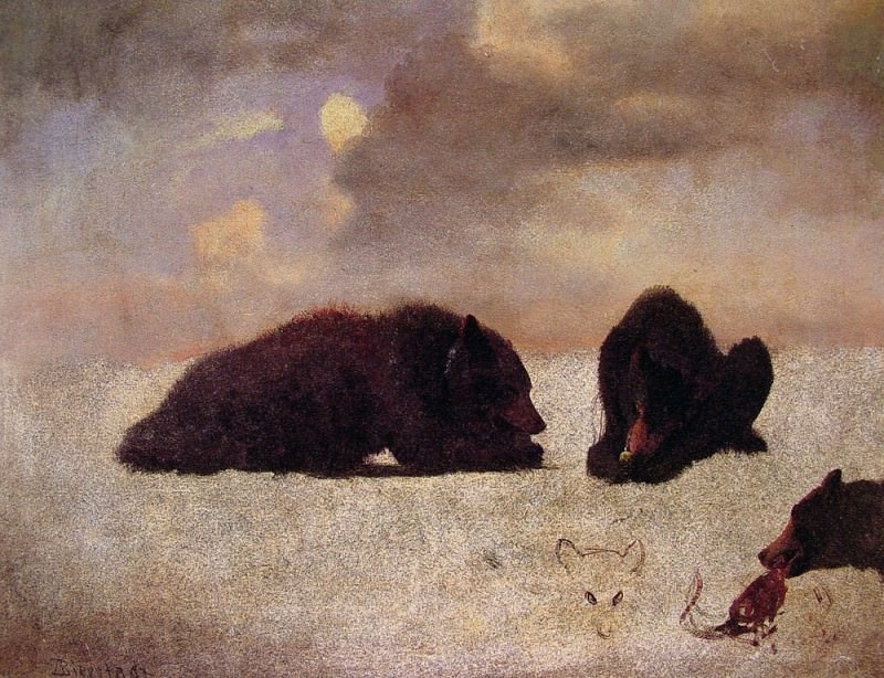 Grizzly Bears. Albert Bierstadt