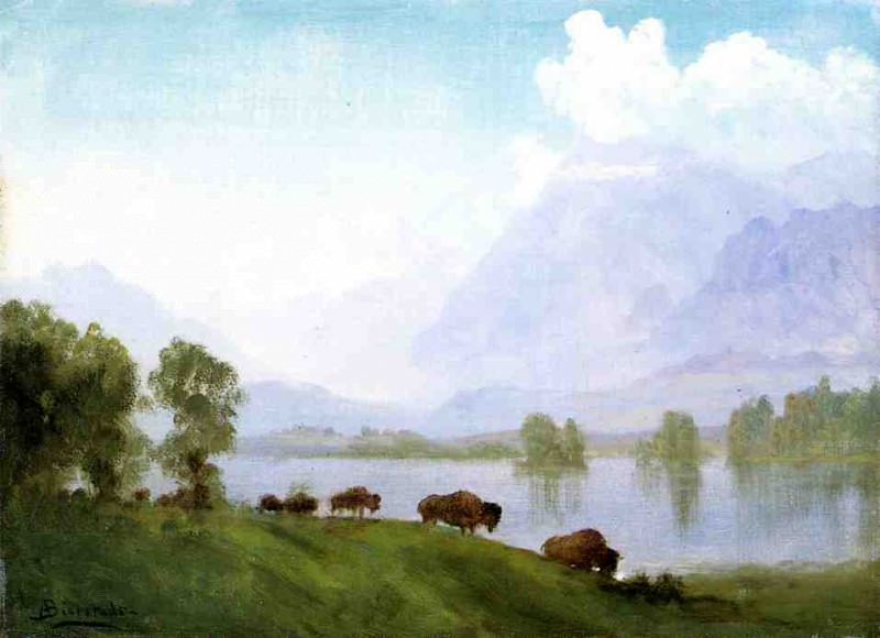 Страна бизонов. Альберт Бирштадт