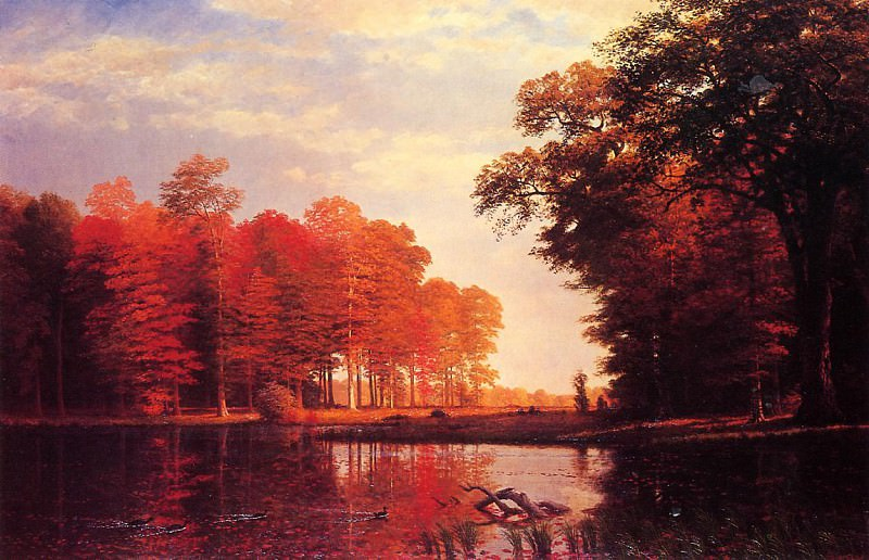 Autumn Woods. Albert Bierstadt
