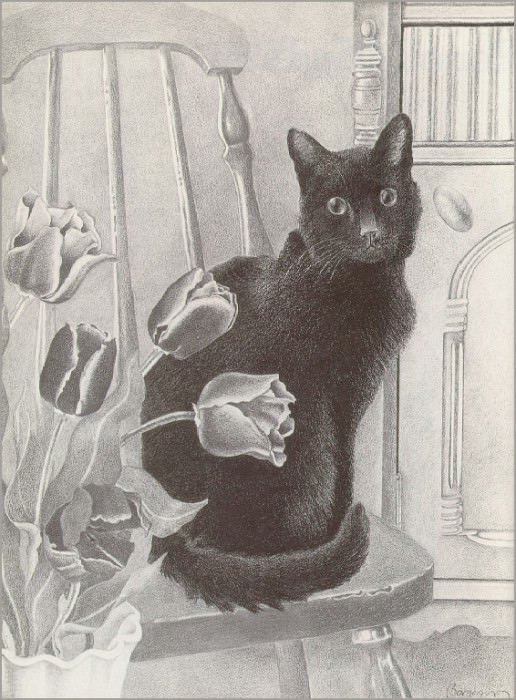 CatAndTulips. Bet Borgeson