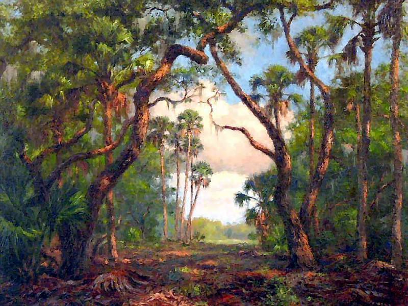 gentle breezes csg027 poinciana hammocks. Albert Ernest Backus