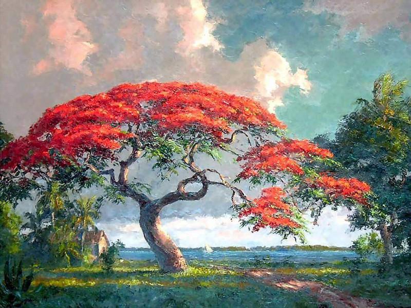 gentle breezes csg013 poinciana on the indian river. Albert Ernest Backus