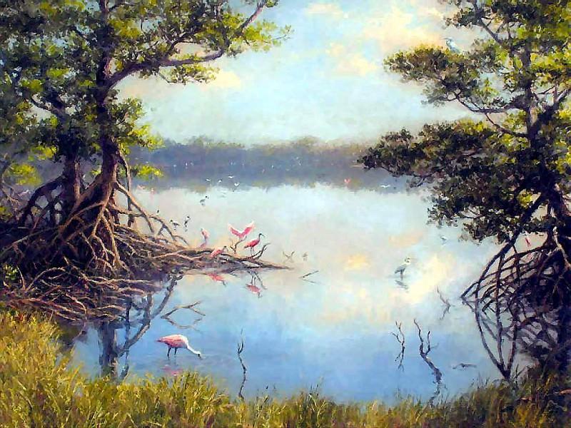 gentle breezes roseates among the mangroves. Albert Ernest Backus