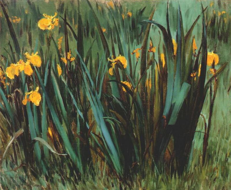 yellow fleur-de-lis 1888. John Breck