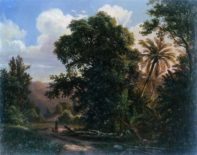 Forest in San Esteban. Ferdinand Bellermann