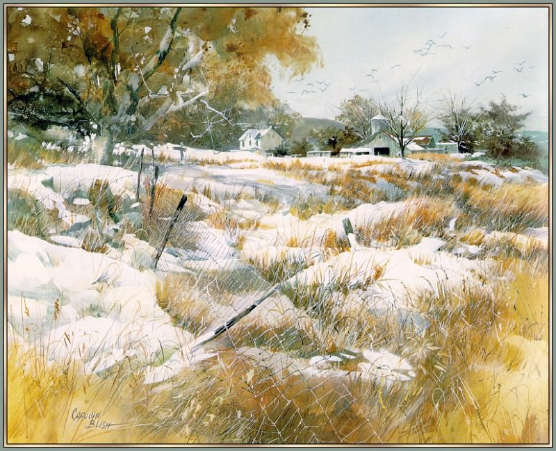 Winter Country. Carolyn Blish