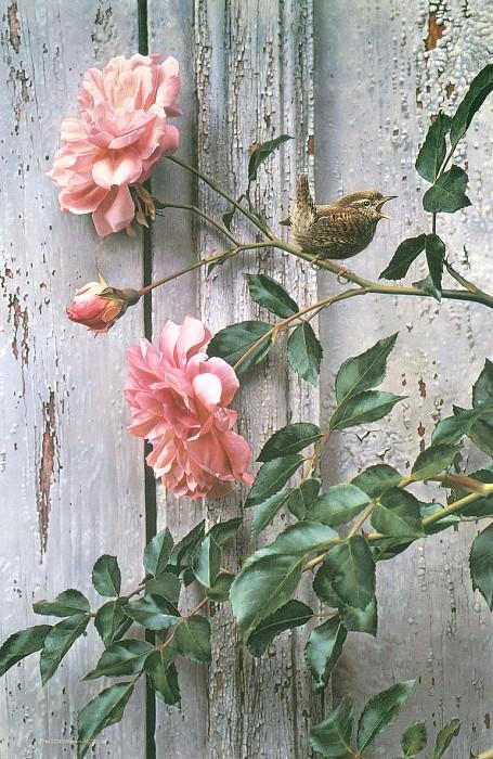 Летние розы. Карл Брендерс