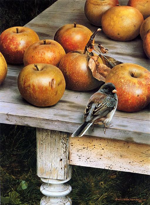 Урожай яблок. Карл Брендерс