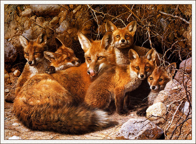 bs-na- Carl Brenders- Full House- Fox Family. Карл Брендерс