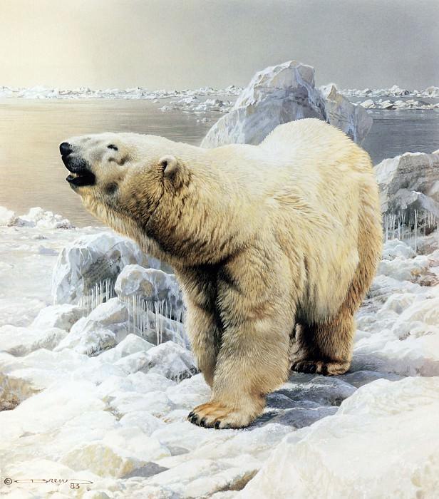 Белый медведь. Карл Брендерс