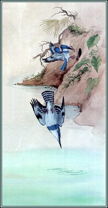 Kingfisher 3. Roger Bansemer