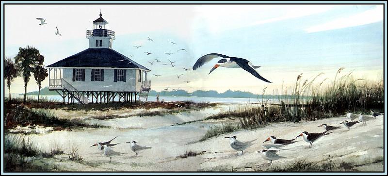 Habitat Ocean Beaches. Roger Bansemer